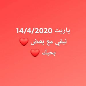 1228568_1585959051.jpg