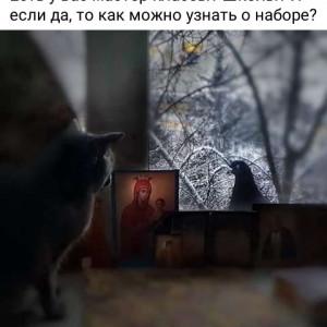 2593318_1614373002.jpg