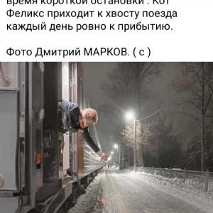 2593318_1614410415.jpg
