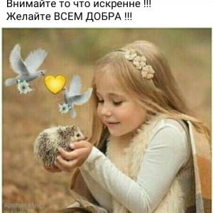 2593318_1614639964.jpg