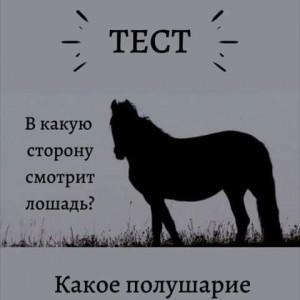 2593318_1615728128.jpg