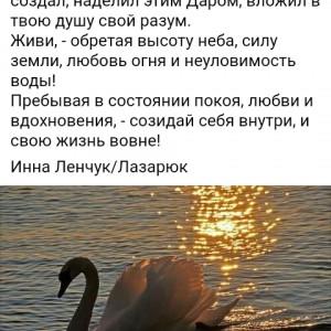 2593318_1616092106.jpg