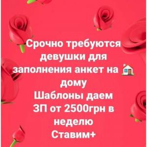2593318_1616245616.jpg