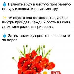 2593318_1616671694.jpg