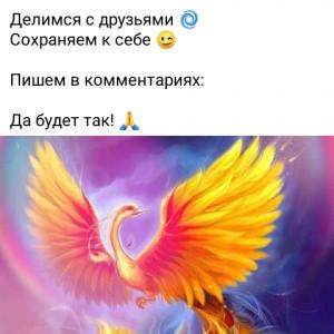 2593318_1616671758.jpg