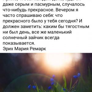 2593318_1617195584.jpg