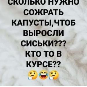 2593318_1617561508.jpg
