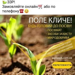 2593318_1618741593.jpg