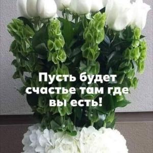 2593318_1619357704.jpg