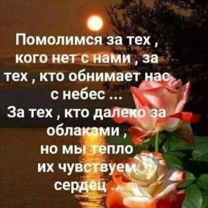 2593318_1619364892.jpg