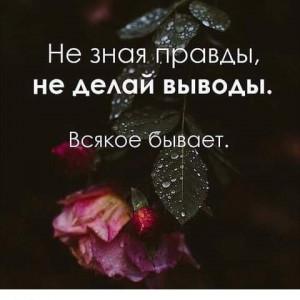 2593318_1619521213.jpg