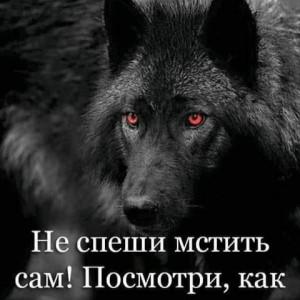 2593318_1620383850.jpg