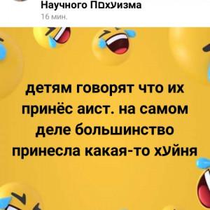 2593318_1620413335.jpg