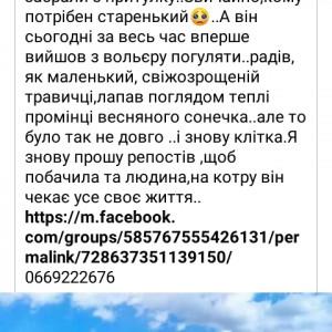 2593318_1620476173.jpg