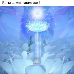 2593318_1620543416.jpg