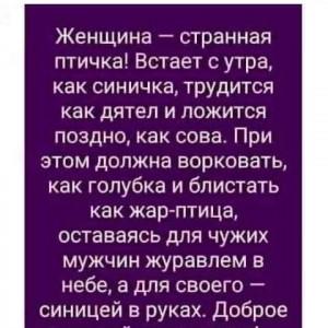 2593318_1620563851.jpg