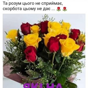 2593318_1620570573.jpg