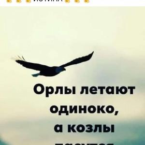 2593318_1620621560.jpg