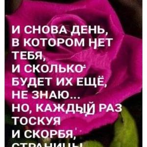 2593318_1620817701.jpg