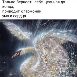 2593318_1620819381.jpg