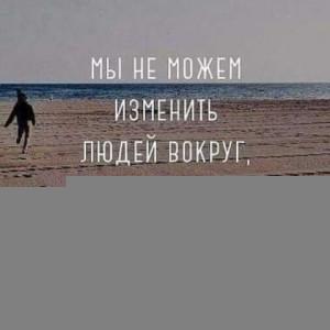 2593318_1621916871.jpg