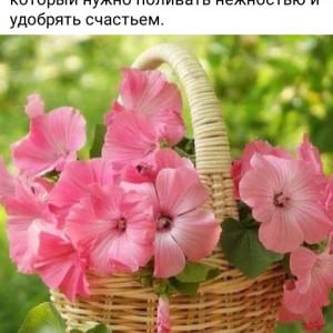 2593318_1624111924.jpg