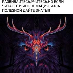 2593318_1624862751.jpg