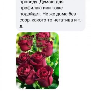 2593318_1625285235.jpg