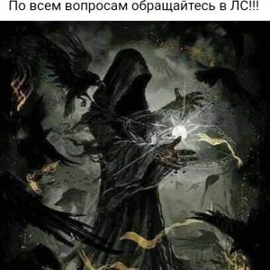 2593318_1625387004.jpg