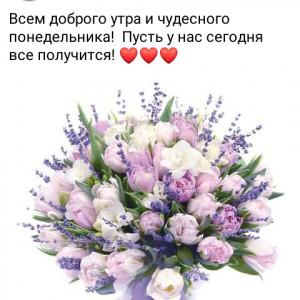 2593318_1625461043.jpg