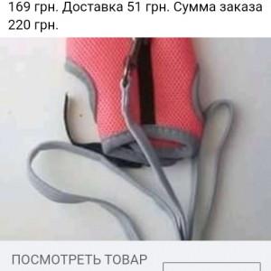 2593318_1630139374.jpg