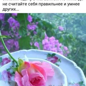 2593318_1634249424.jpg
