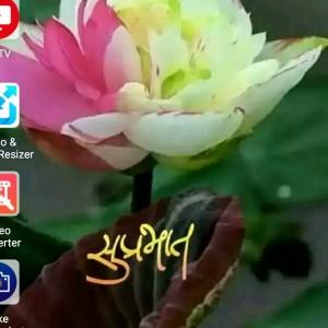 274647_1555676489.jpg