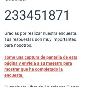 2918244_1623345124.jpg