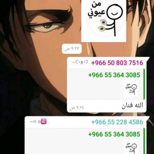 3203874_1614497179.jpg