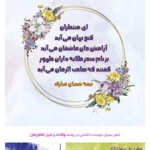 3321021_1616951706.jpg
