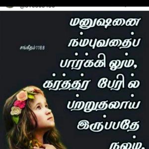 3343192_1618160249.jpg