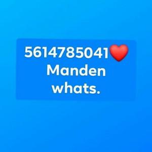 338394_1567480835.jpg