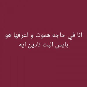 3884653_1618070079.jpg