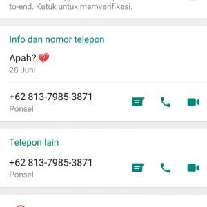 4436949_1625494409.jpg