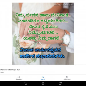 4588351_1622264175.jpg