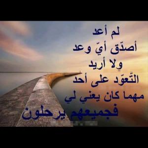 4625745_1622972968.jpg