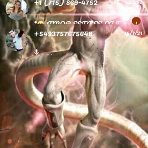 4766739_1626663147.jpg