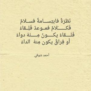 4977455_1627074788.jpg