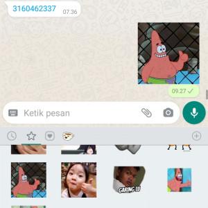 5016646_1628044104.jpg